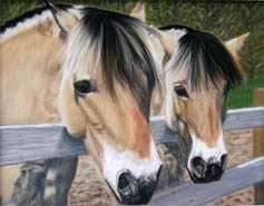 Beezy and Sam horse pastel pet portrait by fine artist Donna Aldrich-Fontaine