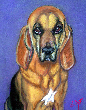 Fine Art Pet Portrait by Artist Donna Aldrich-Fontaine - Emmy Lou Dog.jpg