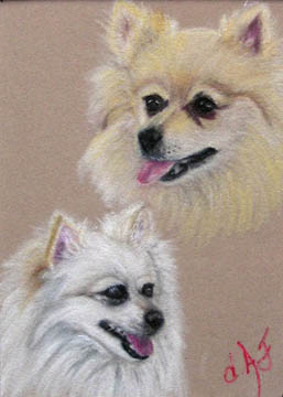 Fine Art Pet Portrait by Artist Donna Aldrich-Fontaine - Two Pomeranians.jpg